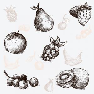 frutas de temporada en boadilla